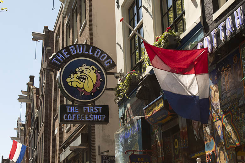 Bulldog Coffee Shop Facade in Amsterdam