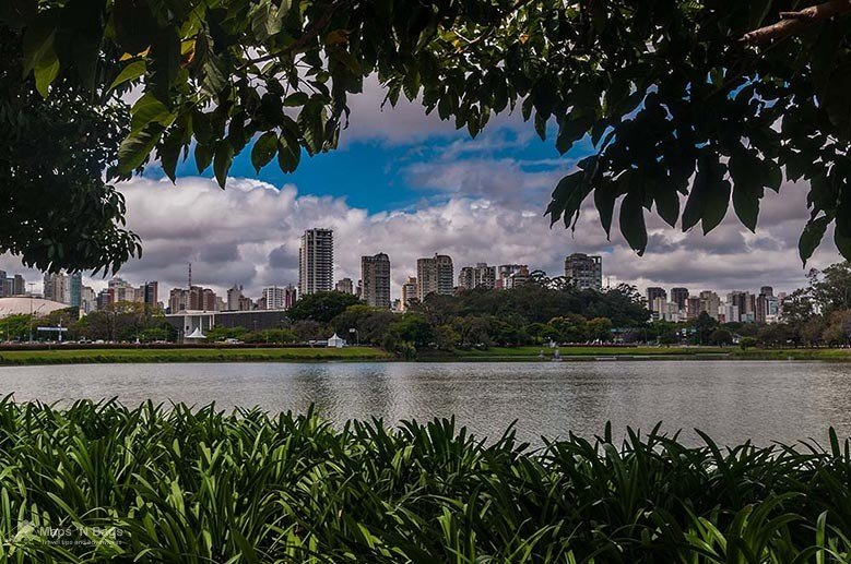 Ibirapuera-Park-sao-paulo-things-to-do-Brazil