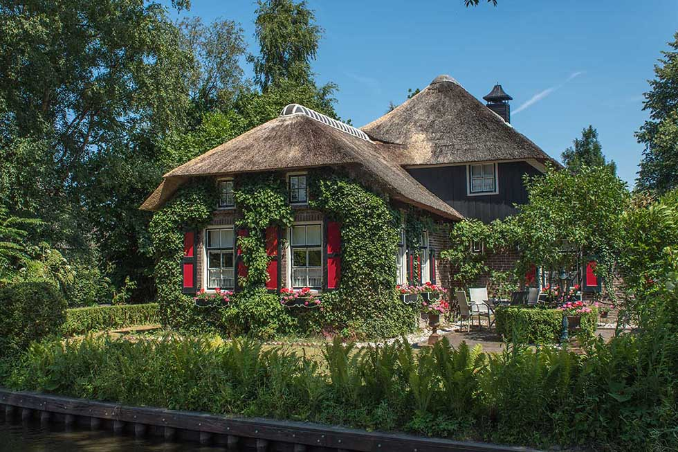 Plant-covered cottage with red windows in Giethoorn.