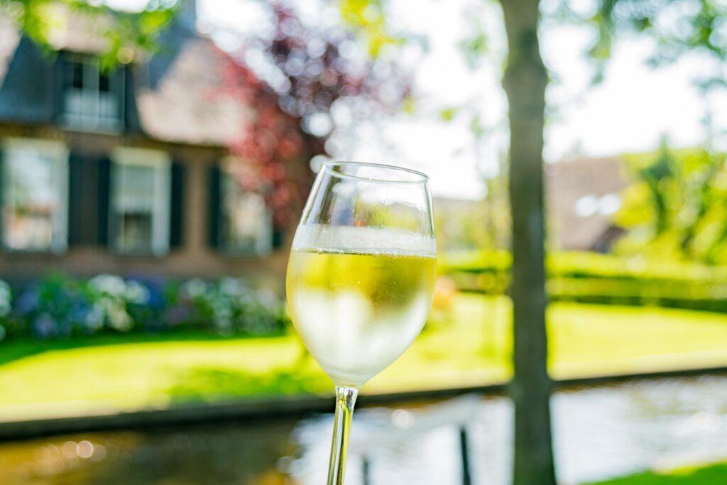 Glass of wine in Giethoorn