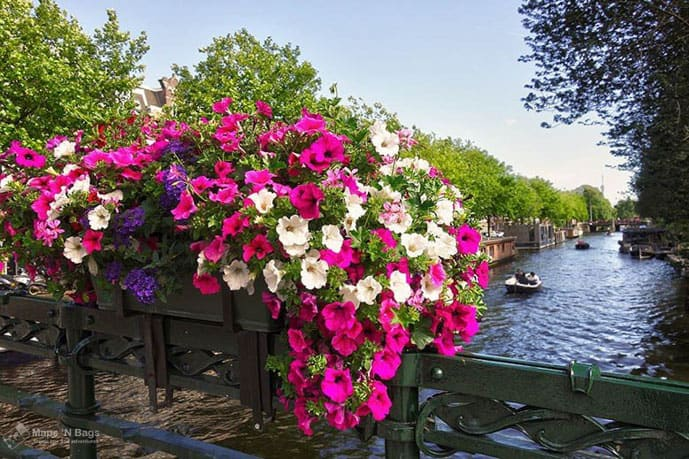 Flowers in bridge in Amsterdam