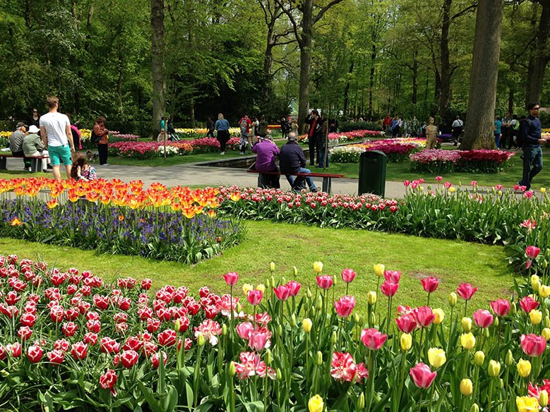People walking around a park of flowers, the Keukenhof.