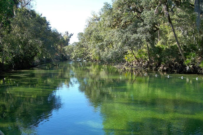 Blue Spring State Park in Florida is one of the best summer vacation spots in the US