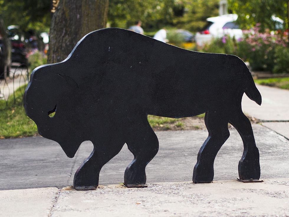 Black plastic buffalo in the city of Buffalo, New York