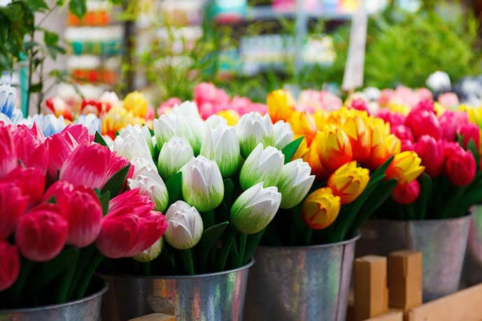 Flower market Amsterdam pictures