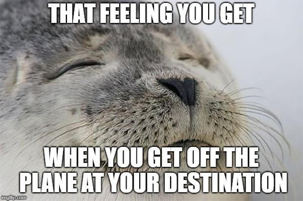 Seal with eyes closed on a travel meme.