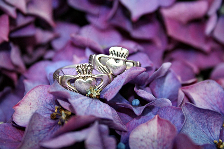 Irish Claddagh Rings on purple leaves