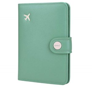 Passport holder for your Ireland Packing List