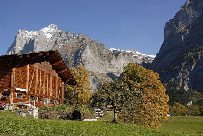 Grinewald in a Switzerland honeymoon