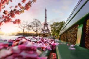 Flowers near the Eiffel Tower in April