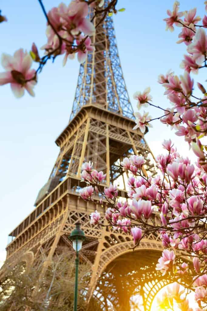 Flowers in front of the Eiffel Tower in April