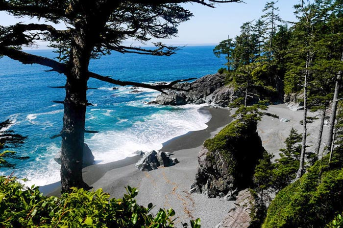 Pacific Rim National Park in Vancouver Island