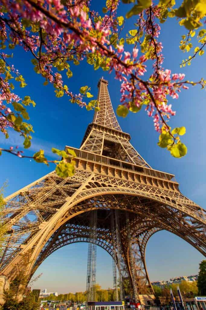 Your complete guide to the best areas to stay in Paris - Eiffel Tower in the springtime