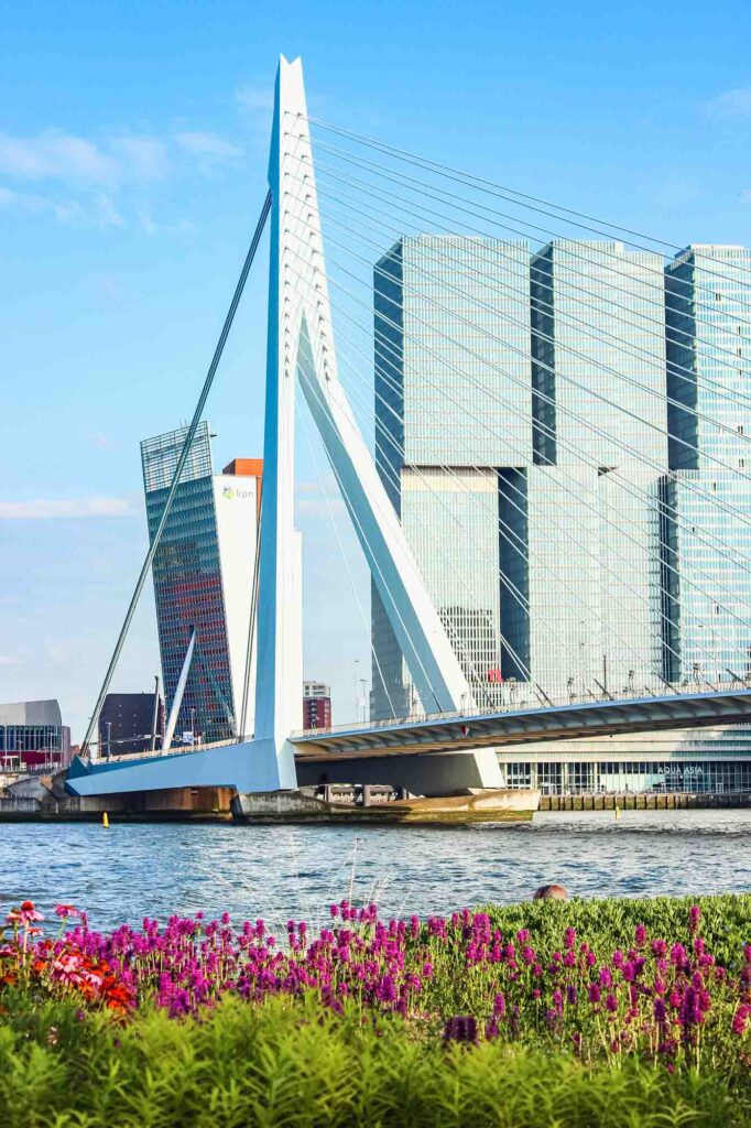Rotterdam is one of the best Dutch cities to visit