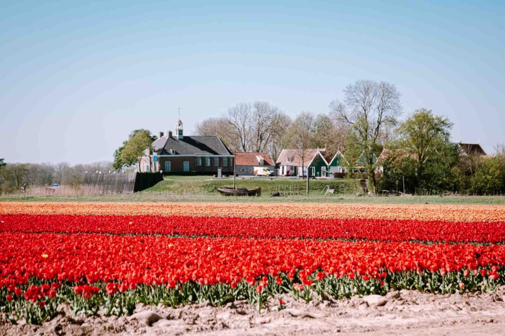 Schokland is one of the cute villages in Holland